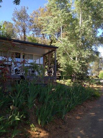 Camping Le Montant : vue d'un bungalow