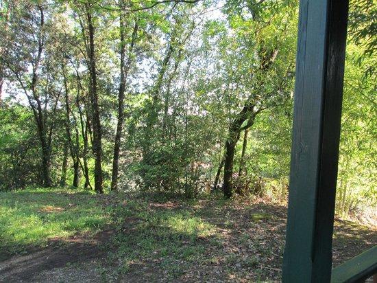 Camping Le Montant : vue devant le chalet
