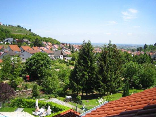 Weinhotel Wiedemann : Blick auf St. Martin