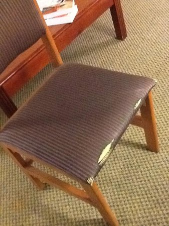 Comfort Suites Auburn Hills: Desk chair
