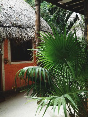Holbox Hotel Mawimbi: one of the bungalows