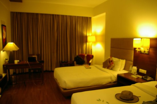 Country Inn & Suites By Carlson-Amritsar, Queens Road: My room