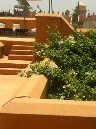 Hotel & Spa Dar Baraka & Karam: roof top