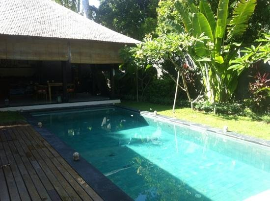 Mango Tree Villas: the pool