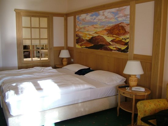 Hotel Adler Thermae Spa & Relax Resort: Camera