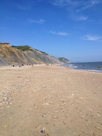 Seadown Holiday Park: dog friendly beach