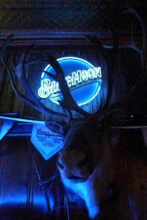 The Singing Pig BBQ Restaurant: Moose decoration