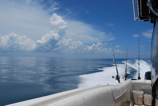 Unreel Fishing Charters: Perfect glassy day in the gulf.