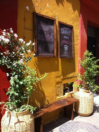 Oaxacan coffee: Information