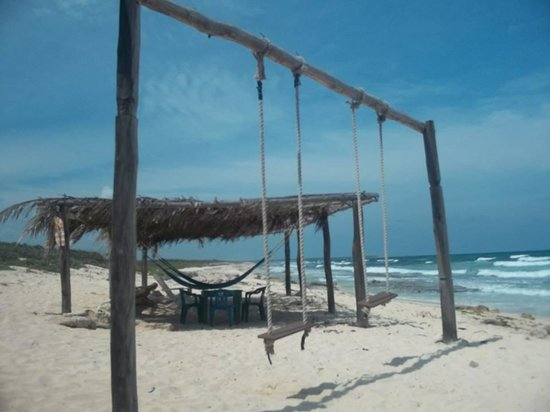 Mezcalitos Restaurant & Beach Bar Cozumel : Swings!