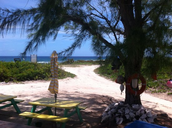 Daniel's Cafe by the Sea: View from deck