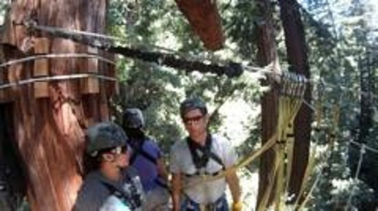 Redwood Canopy Tours: relaxed, fun atmosphere