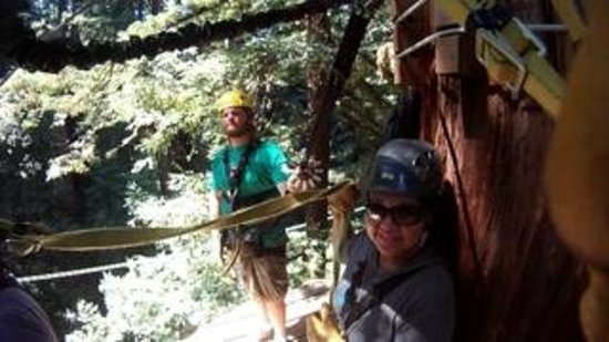 Redwood Canopy Tours: informative guide