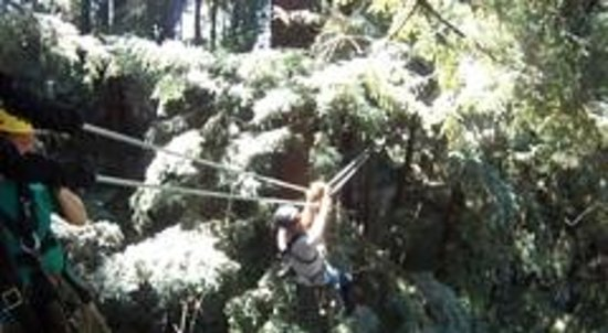Redwood Canopy Tours: off we go