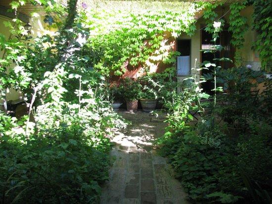 B&B Capannetti: Garden courtyard