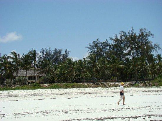 Baobab Sea Lodge: plaża