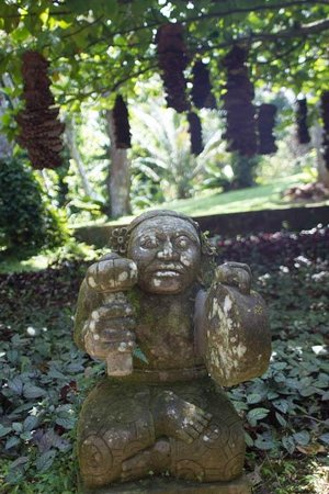 Apa Villa Illuketia: Garden