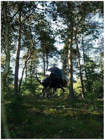 Big Beetle by René Schmidt