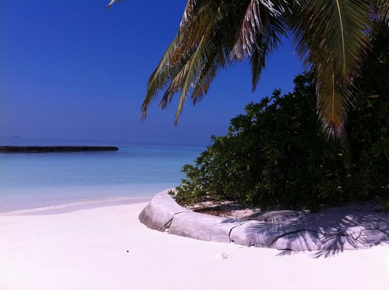 Baros Maldives: Beach in front of Sails Bar Baros
