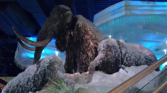 Wooly mammoths foto van t rex kansas city tripadvisor for T rex location