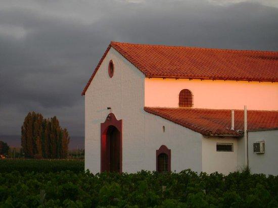 Bodega Familia Cassone