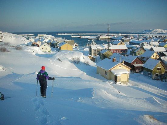 Berlevag Pensjonat: Exciting winter activity