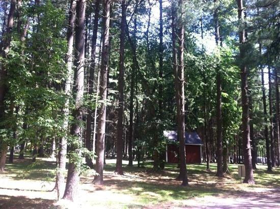 Lock 30 Woodlands RV Campground Resort: Rustic camping area.