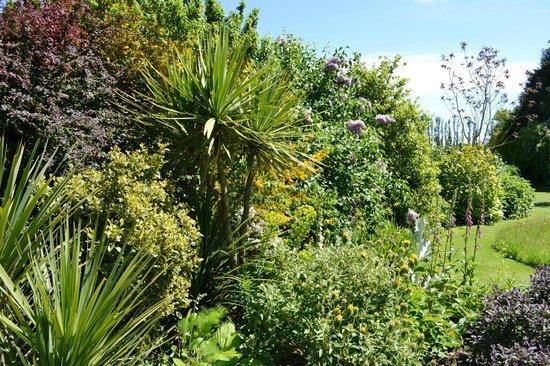Denmans Garden: the garden