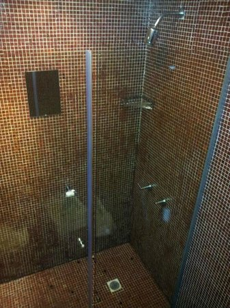 Vain Boutique Hotel: shower
