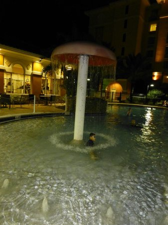 Homewood Suites by Hilton Lake Buena Vista-Orlando: outdoor pool