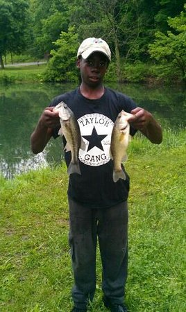 Silver Springs State Park: my son caught these bass.