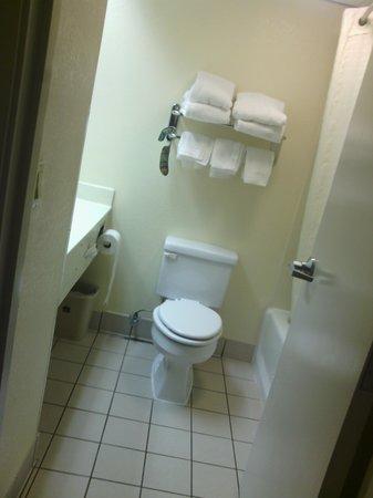 BEST WESTERN Thunderbird Motel: bathroom