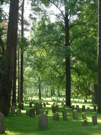 Skogskyrkogården : Waldfriedhof