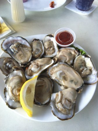 P.T. Pelican's Intercoastal Deck Bar : Fattest oysters ever!