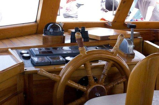 Seahorse Cruises: Wheel house
