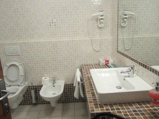 Villa Dobravac: spacious sink space