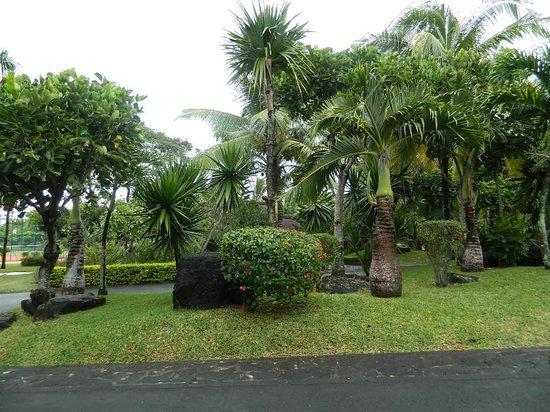LUX* Grand Gaube: The gardens