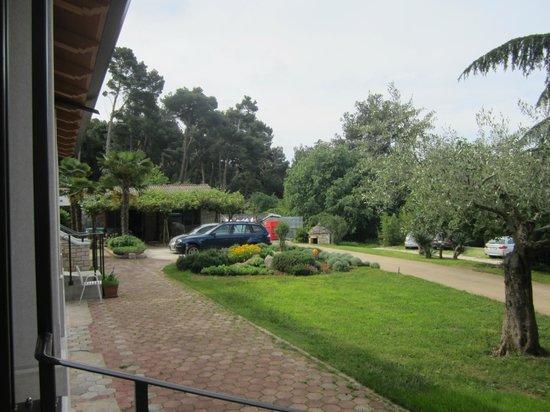 Villa Dobravac: grounds