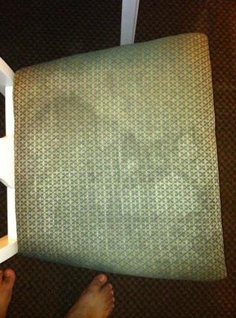 Deerfield Inn & Suites: stained chair