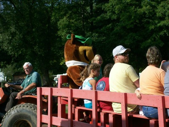 Yogi Bear's Jellystone Park : Character Hayride(s) Twice Daily (AM and PM)