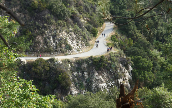 Big Santa Anita Canyon: Downhill on paved road