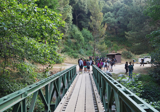 Big Santa Anita Canyon: Gathering near footbridge
