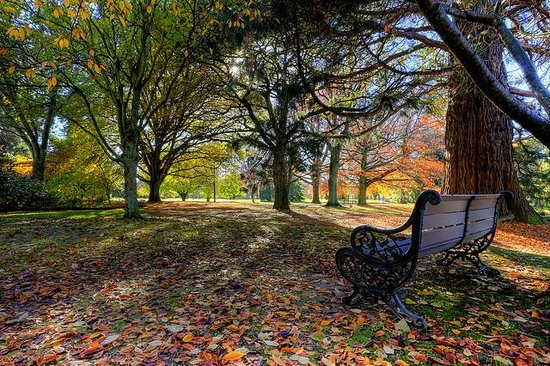 بلينهيم, نيوزيلندا: Pollard Park