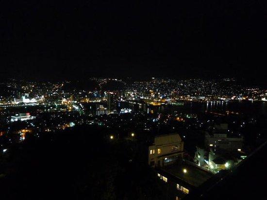 Inasayama Kanko Hotel: 屋上から見た夜景