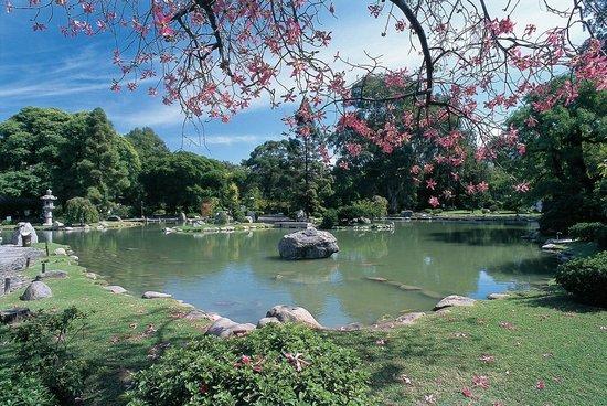 حديقة باركيوز دي باليمو