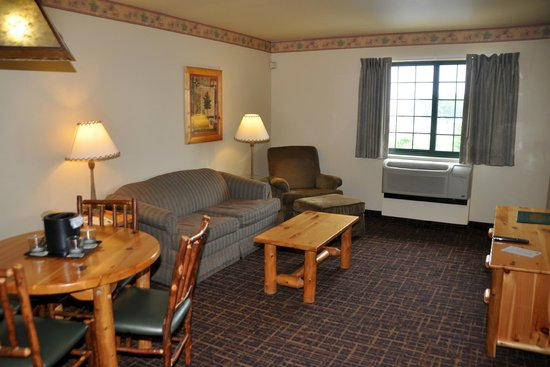 Tundra Lodge Resort Waterpark & Conference Center: TV/sleeper sofa area
