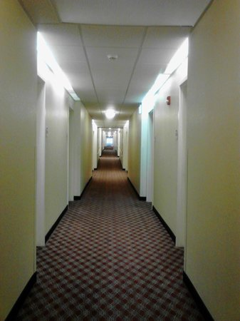 MCM Elegante Suites: Never-ending hallway to our room lol