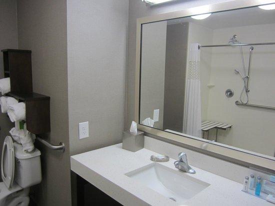Hampton Inn & Suites Columbia/Southeast-Ft. Jackson: Excellent walk in shower