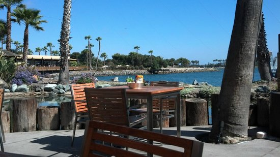 Paradise Point Resort & Spa: View while dining at Barefoot Bar & Grill