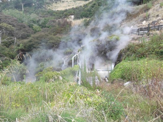Waikite Valley Thermal Pools: The springs farther down over the fence